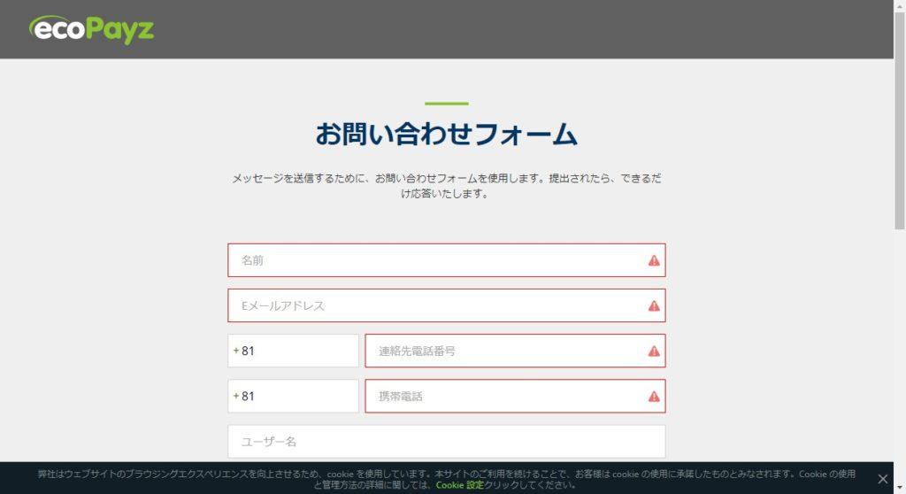 ecoPayzのお問い合わせフォーム画面を表示した画像。