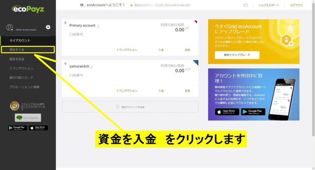 ecoPayzログイン画面