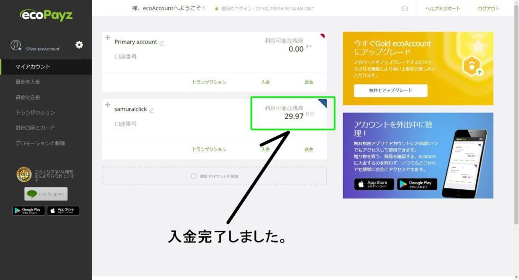 ecoPayzアカウント画面。入金がされました。