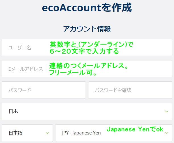 ecoPayzアカウント情報入力画面