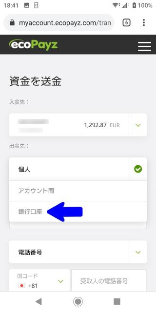 エコペイズの資金を送金する画面。